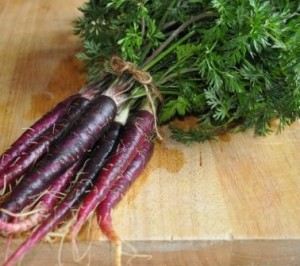 An image of purple carrots