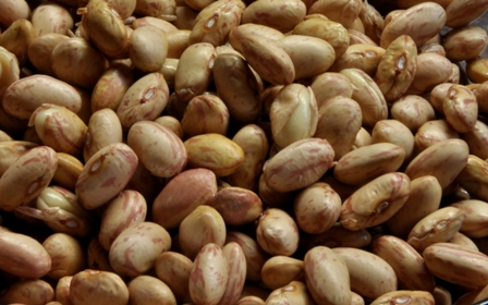 An image of dried Borlotti beans