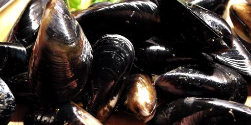 A close up image of Boston Bay black mussels