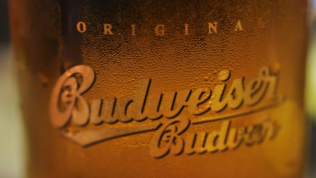 An image of Budvar beer
