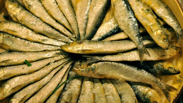 An image of salted sardines at la boqueria