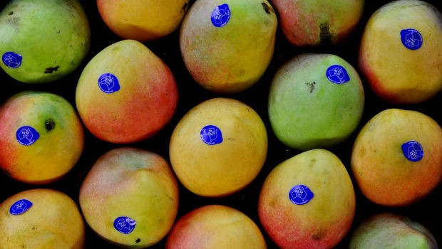 Mangoes are of the top 5 super foods for kids