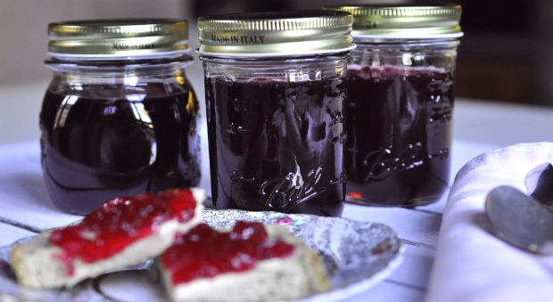 lillypilly-jelly-in-jars