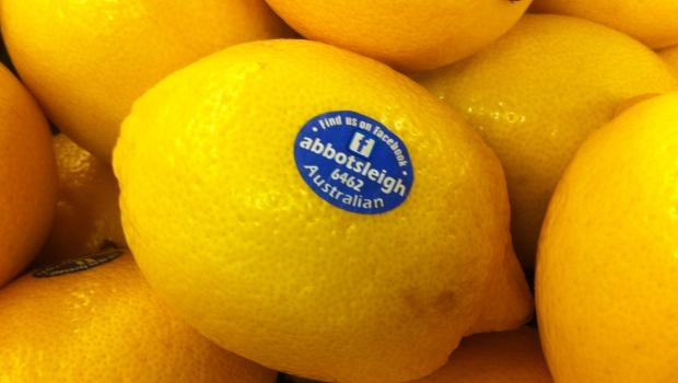 Abbotsleigh lemons