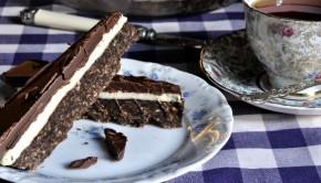 chocolate coconut slice