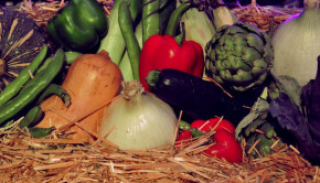 Rabobank F20 and Taste of the Harvest dinner