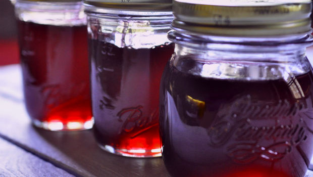 lillypilly jelly in jars in a row